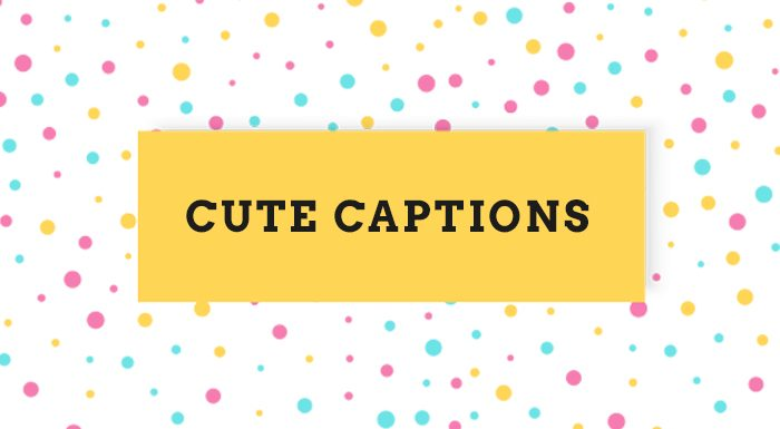 85+ Cute Instagram Captions for Photos